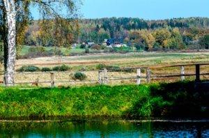Отдых в Пушкинских горах